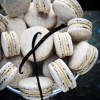 Thumbnail image for Vanilla Bean Macarons